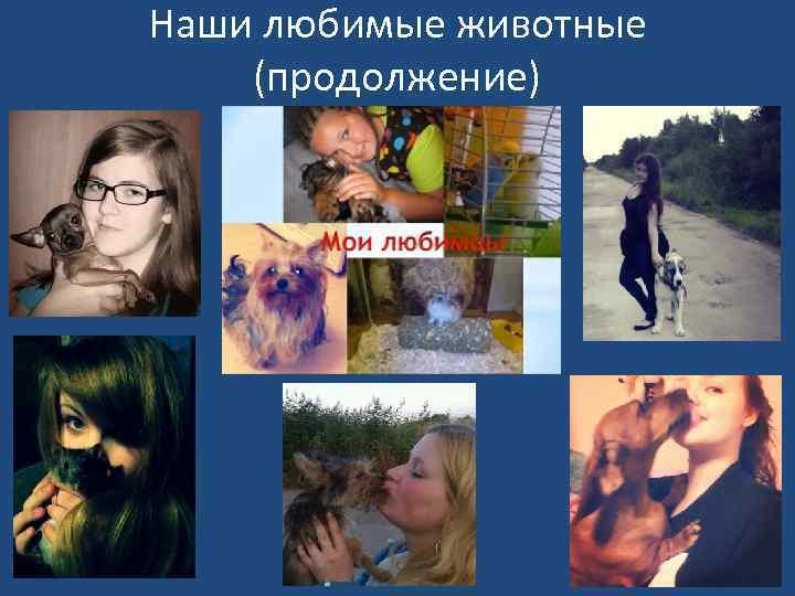 Наши любимые животные (продолжение)