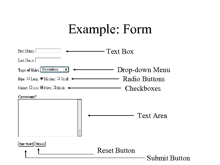 Example: Form Text Box Drop-down Menu Radio Buttons Checkboxes Text Area Reset Button Submit