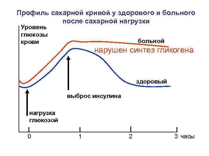 Сахарная кривая нормы для беременных 74