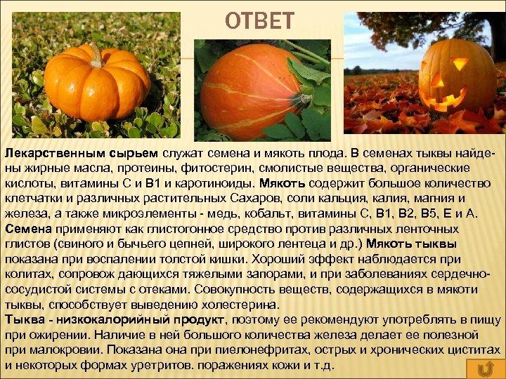 ОТВЕТ Лекарственным сырьем служат семена и мякоть плода. В семенах тыквы найде- ны жирные