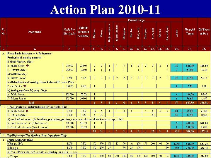 Action Plan 2010 -11