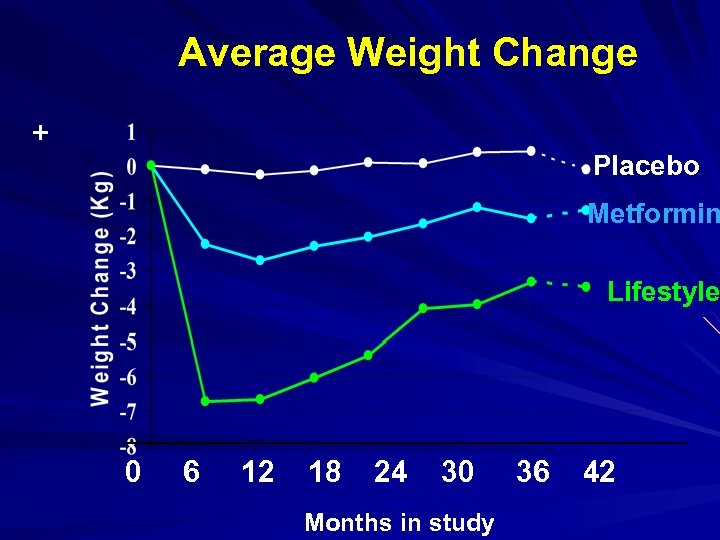 Average Weight Change + Placebo Metformin Lifestyle 0 6 12 18 24 30 Months