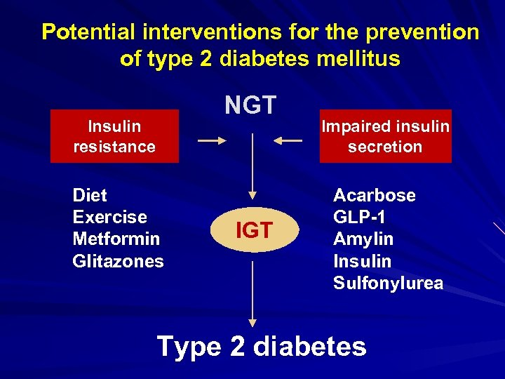 Potential interventions for the prevention of type 2 diabetes mellitus NGT Insulin resistance Diet