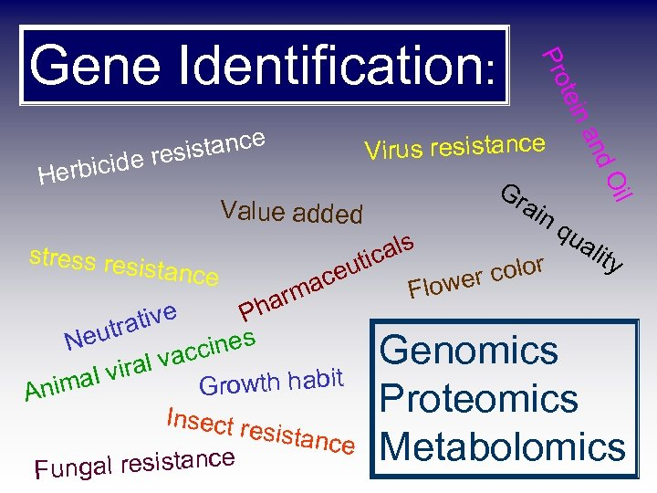 tein istance s cide re erbi Pro Gene Identification: il d. O an Virus