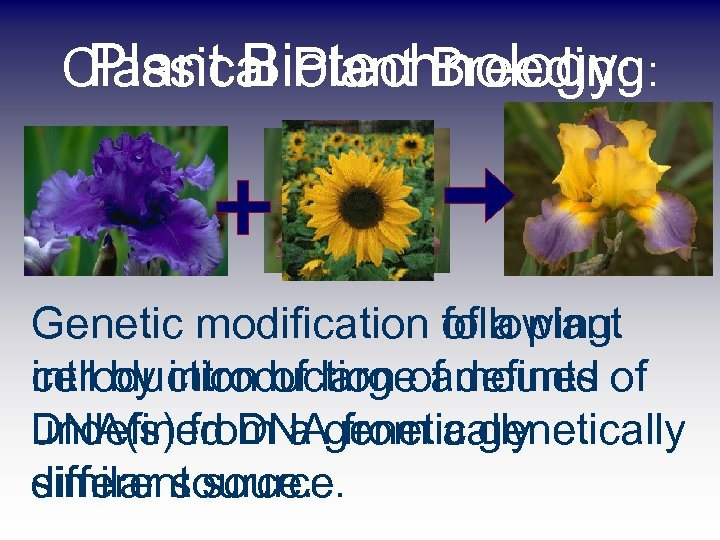 Plant Biotechnology: Classical Plant Breeding: Genetic modification following of a plant cell by introduction