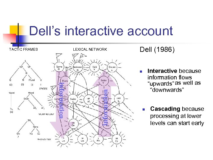 Dell's interactive account TACTIC FRAMES LEXICAL NETWORK Dell (1986) information n n Interactive because