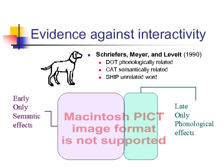 Evidence against interactivity n Schriefers, Meyer, and Levelt (1990) n n n Early Only