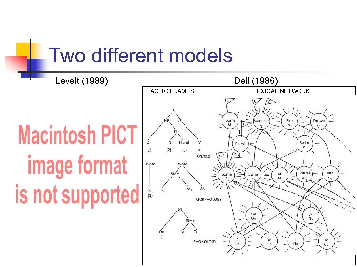 Two different models Levelt (1989) Dell (1986) TACTIC FRAMES LEXICAL NETWORK
