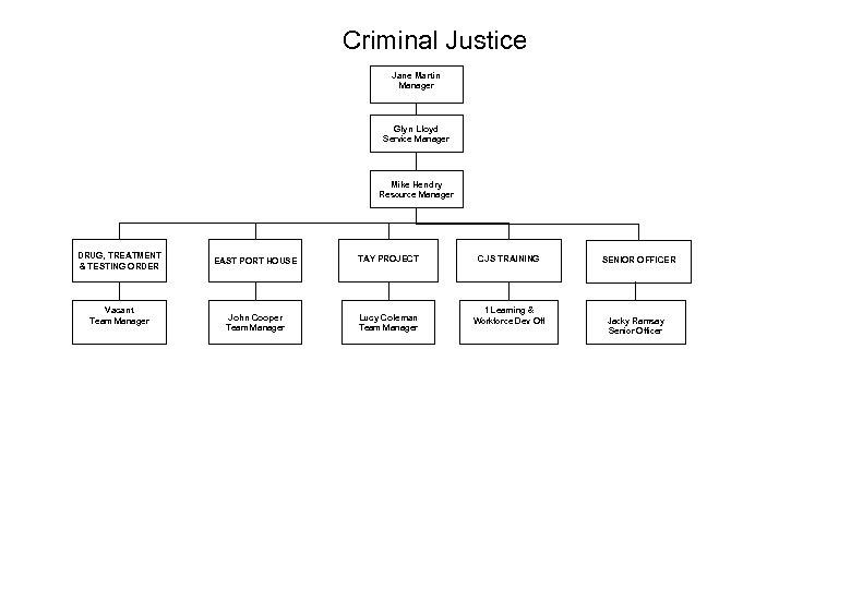 Criminal Justice Jane Martin Manager Glyn Lloyd Service Manager Mike Hendry Resource Manager DRUG,