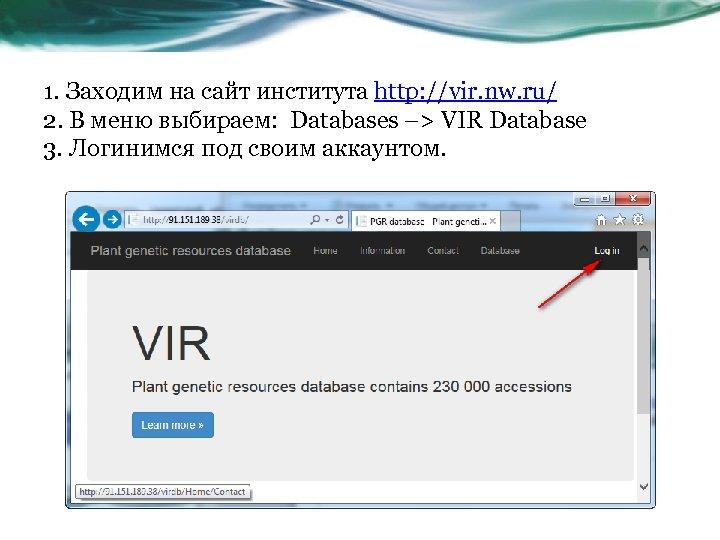 1. Заходим на сайт института http: //vir. nw. ru/ 2. В меню выбираем: Databases