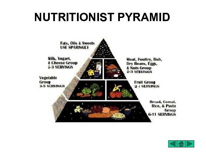 NUTRITIONIST PYRAMID
