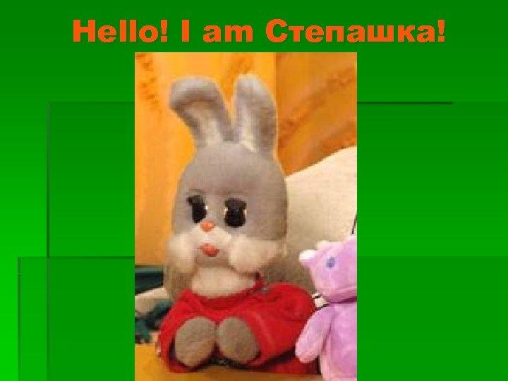 Hello! I am Степашка!