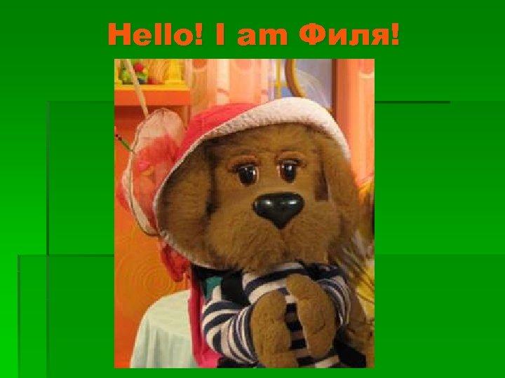 Hello! I am Филя!