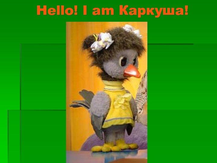 Hello! I am Каркуша!