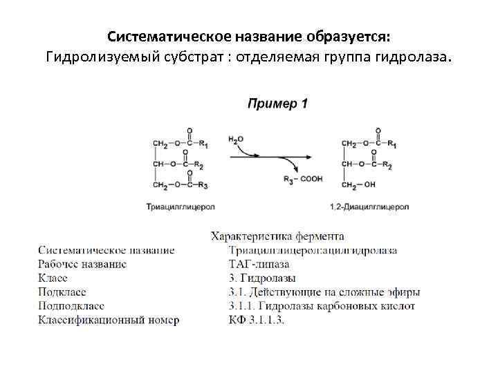 Систематическое название образуется: Гидролизуемый субстрат : отделяемая группа гидролаза.