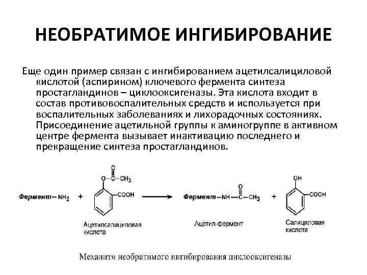 НЕОБРАТИМОЕ ИНГИБИРОВАНИЕ Еще один пример связан с ингибированием ацетилсалициловой кислотой (аспирином) ключевого фермента синтеза