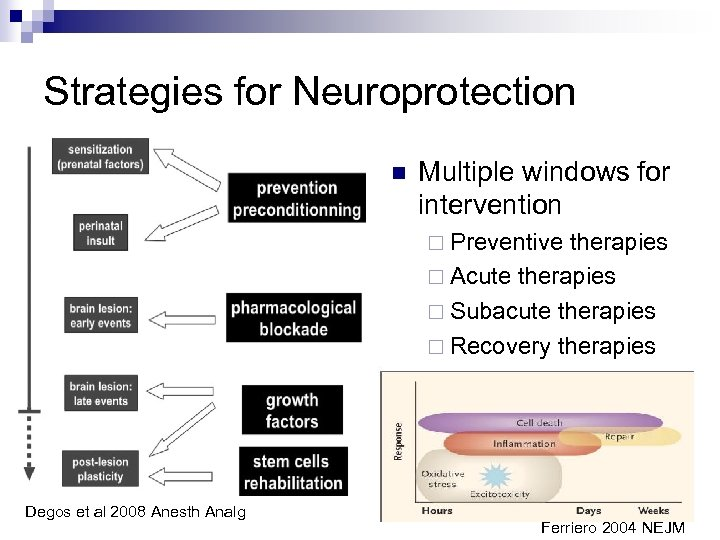 Strategies for Neuroprotection n Multiple windows for intervention ¨ Preventive therapies ¨ Acute therapies