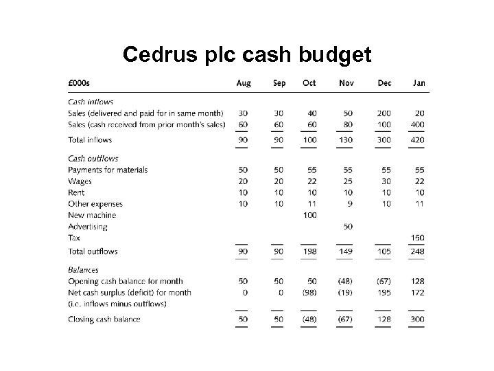 Cedrus plc cash budget