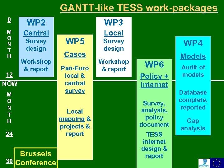 GANTT-like TESS work-packages 0 WP 2 WP 3 M O N T H Central