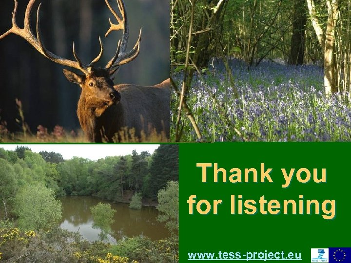 Thank you for listening Convention on Biological Diversity – Clearing House Mechanism European Environment