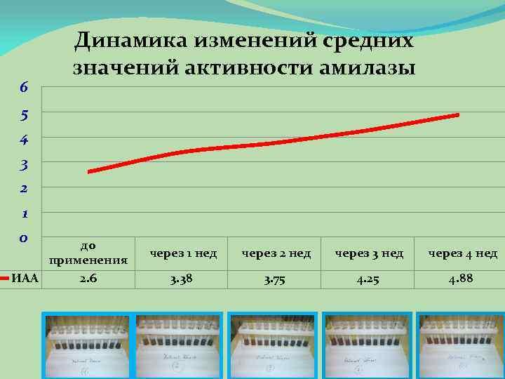 6 Динамика изменений средних значений активности амилазы 5 4 3 2 1 0 до