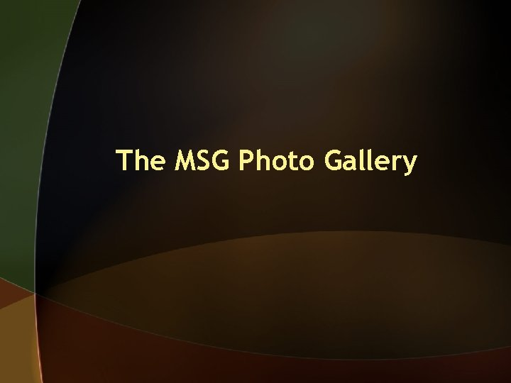 The MSG Photo Gallery