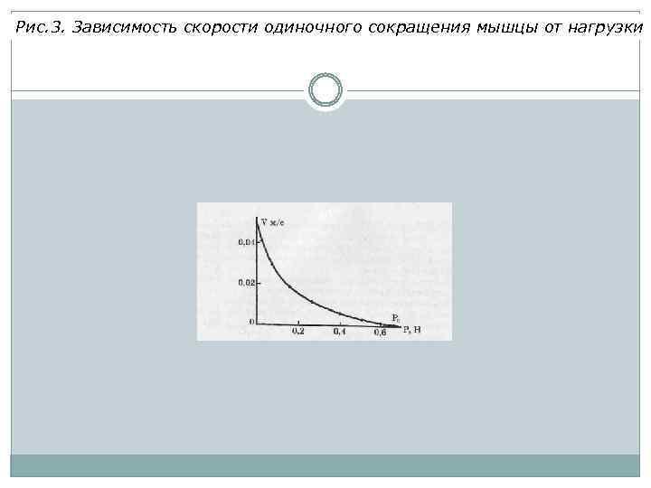 Рис. 3. Зависимость скорости одиночного сокращения мышцы от нагрузки