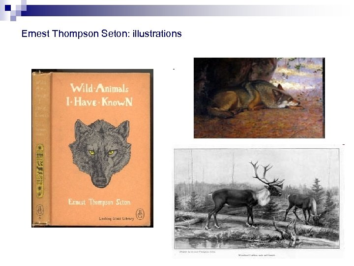 Ernest Thompson Seton: illustrations