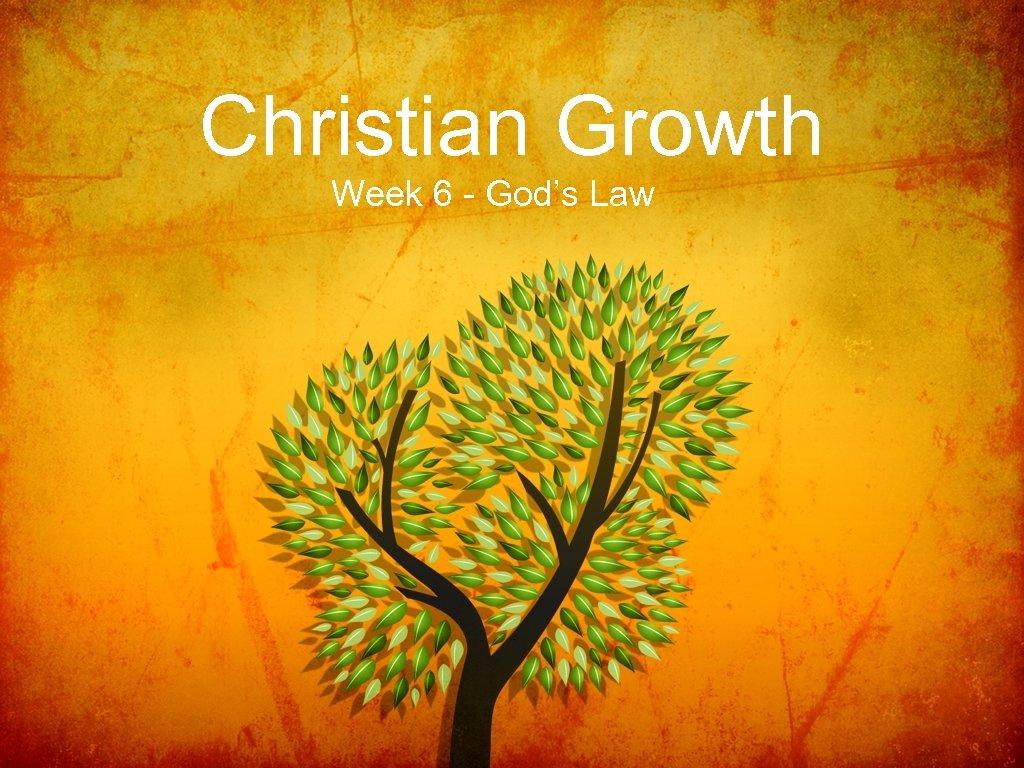 Christian Growth Week 6 - God's Law