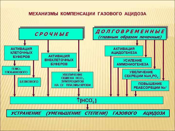 МЕХАНИЗМЫ КОМПЕНСАЦИИ ГАЗОВОГО АЦИДОЗА ДОЛГОВРЕМЕННЫЕ СРОЧНЫЕ АКТИВАЦИЯ КЛЕТОЧНЫХ БУФЕРОВ ГЕМОГЛОБИНОВОГО БЕЛКОВОГО (главным образом почечные)
