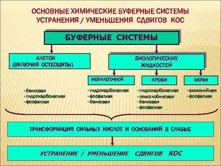 ОСНОВНЫЕ ХИМИЧЕСКИЕ БУФЕРНЫЕ СИСТЕМЫ УСТРАНЕНИЯ / УМЕНЬШЕНИЯ СДВИГОВ КОС БУФЕРНЫЕ СИСТЕМЫ КЛЕТОК (ВКЛЮЧАЯ ОСТЕОЦИТЫ)