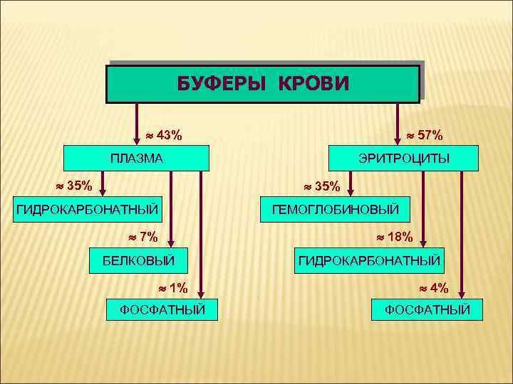 БУФЕРЫ КРОВИ 43% 57% ПЛАЗМА 35% ЭРИТРОЦИТЫ 35% ГИДРОКАРБОНАТНЫЙ ГЕМОГЛОБИНОВЫЙ 7% 18% БЕЛКОВЫЙ 1%