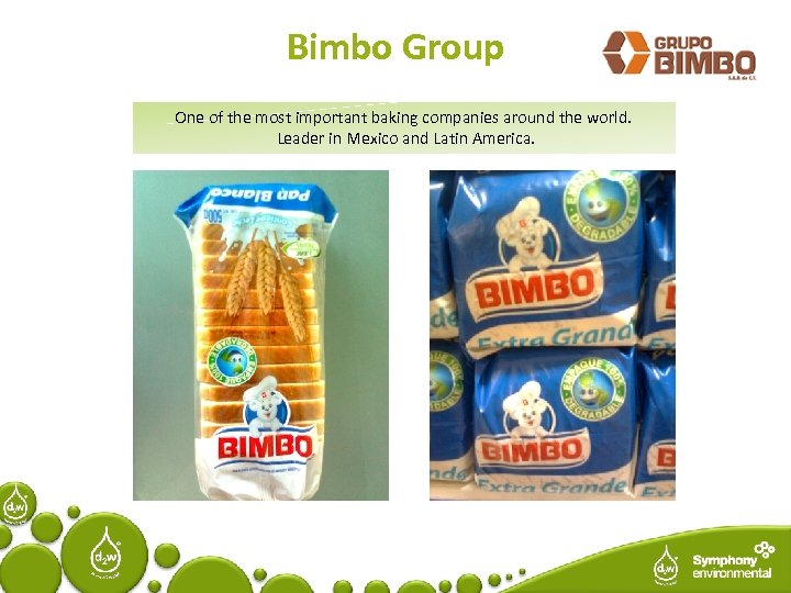 Bimbo Group One of the most important baking companies around the world. Leader in