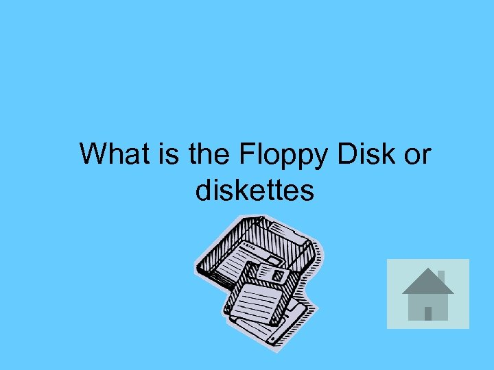 What is the Floppy Disk or diskettes