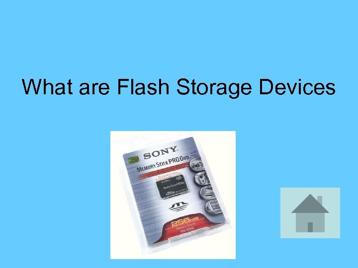 What are Flash Storage Devices