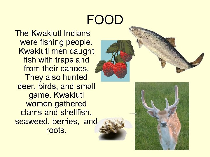 FOOD The Kwakiutl Indians were fishing people. Kwakiutl men caught fish with traps and