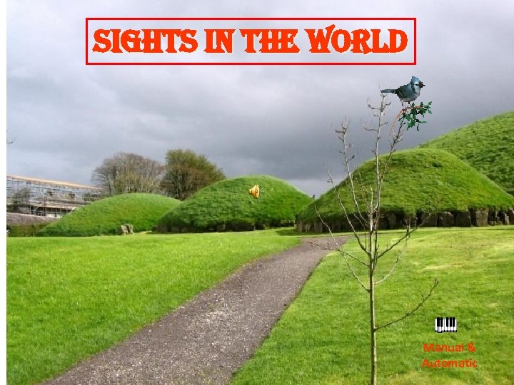 sights in the World Manual & Automatic
