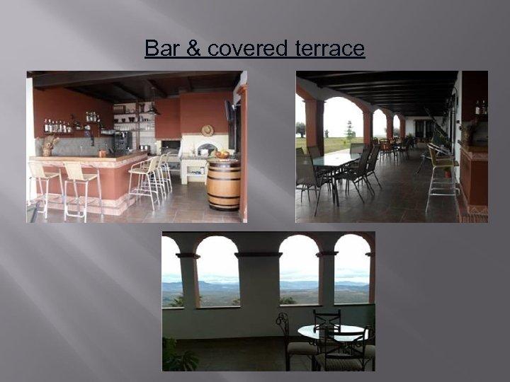 Bar & covered terrace