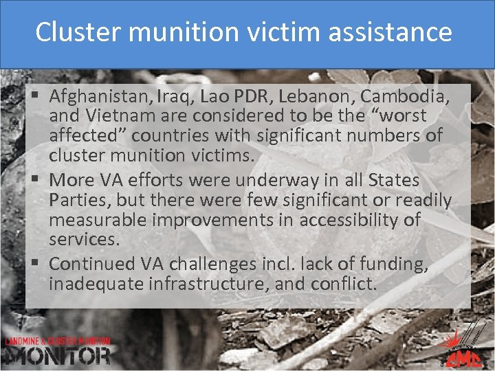 Cluster munition victim assistance § Afghanistan, Iraq, Lao PDR, Lebanon, Cambodia, and Vietnam are