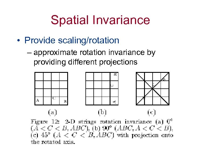 Spatial Invariance • Provide scaling/rotation – approximate rotation invariance by providing different projections