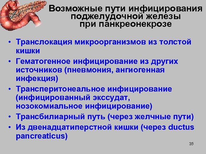Возможные пути инфицирования поджелудочной железы при панкреонекрозе • Транслокация микроорганизмов из толстой кишки •