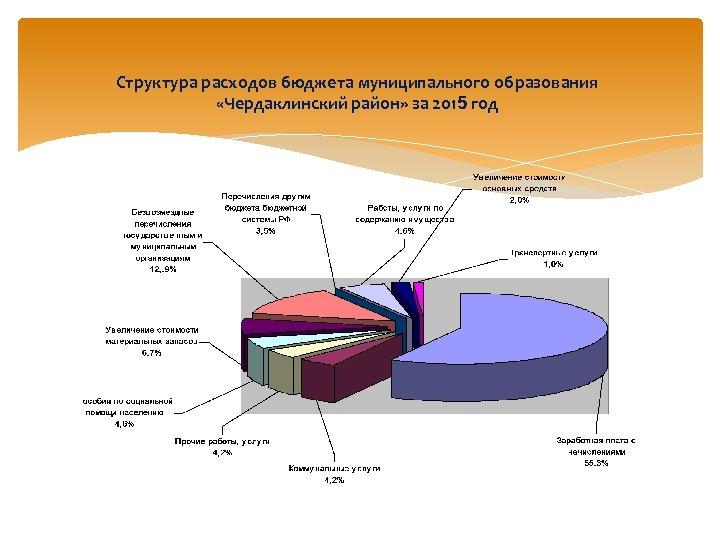 Структура расходов бюджета муниципального образования «Чердаклинский район» за 2015 год