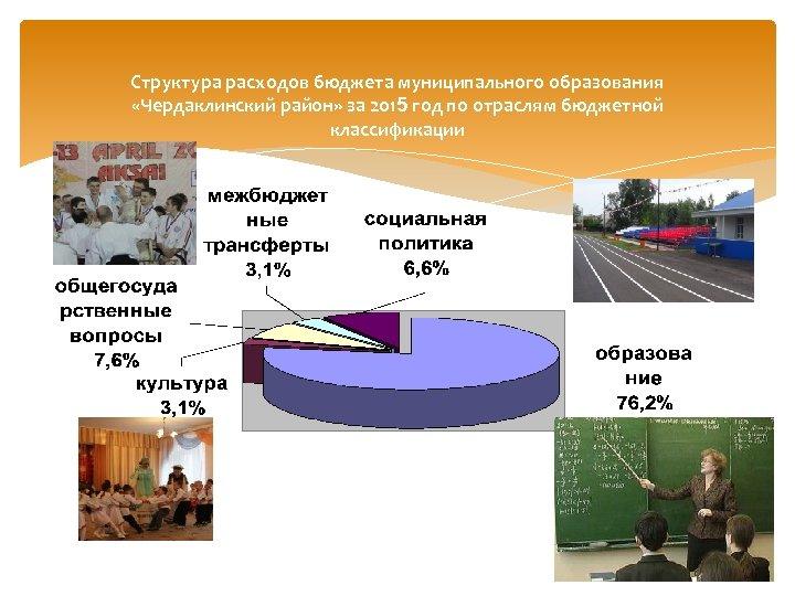 Структура расходов бюджета муниципального образования «Чердаклинский район» за 2015 год по отраслям бюджетной классификации