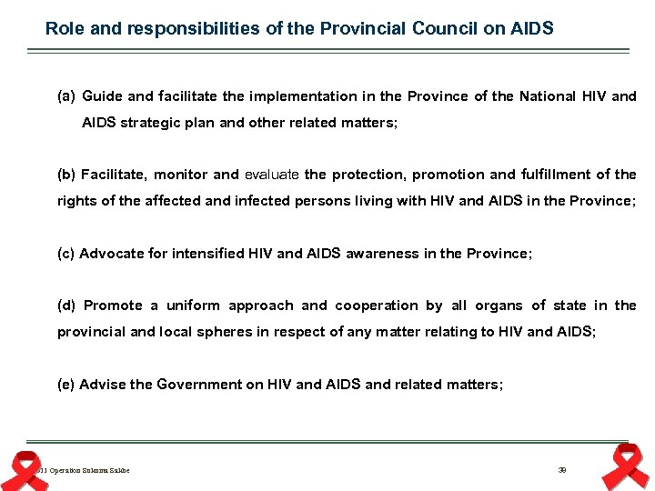 Role and responsibilities of the Provincial Council on AIDS (a) Guide and facilitate the