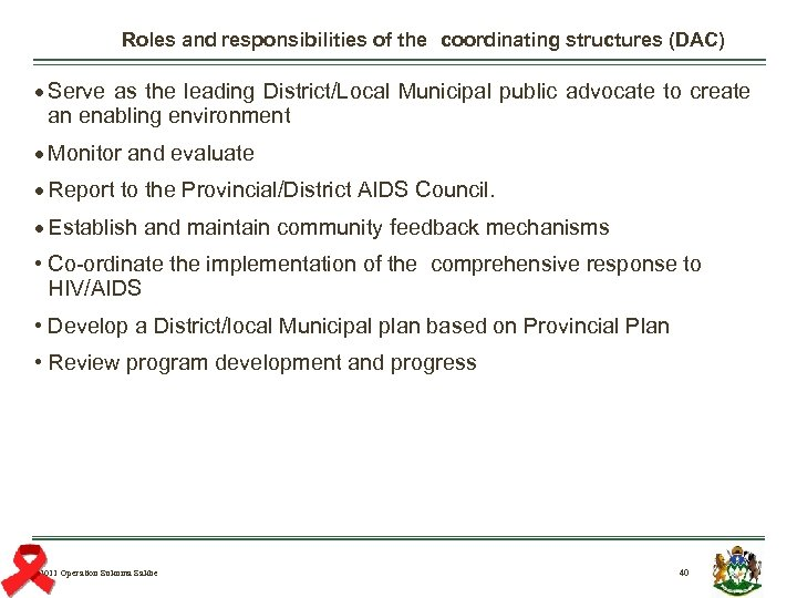 Roles and responsibilities of the coordinating structures (DAC) Serve as the leading District/Local Municipal