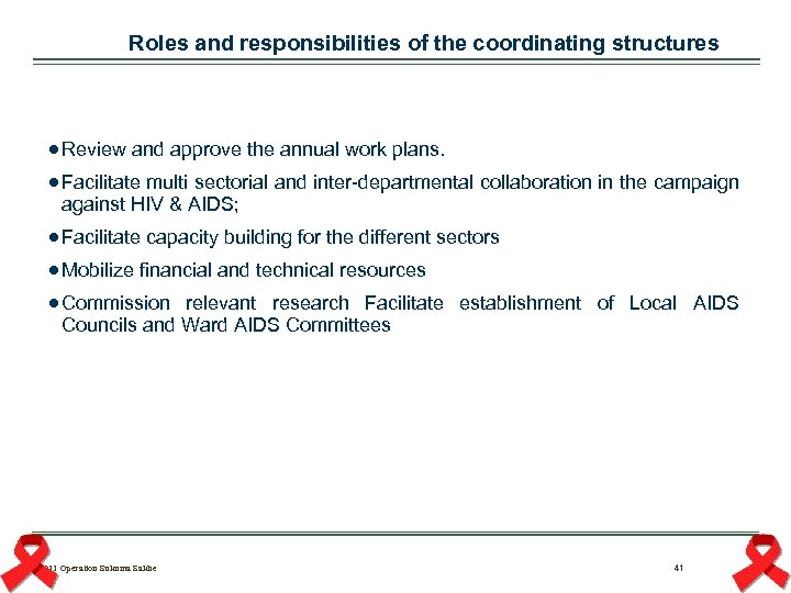 Roles and responsibilities of the coordinating structures Review and approve the annual work