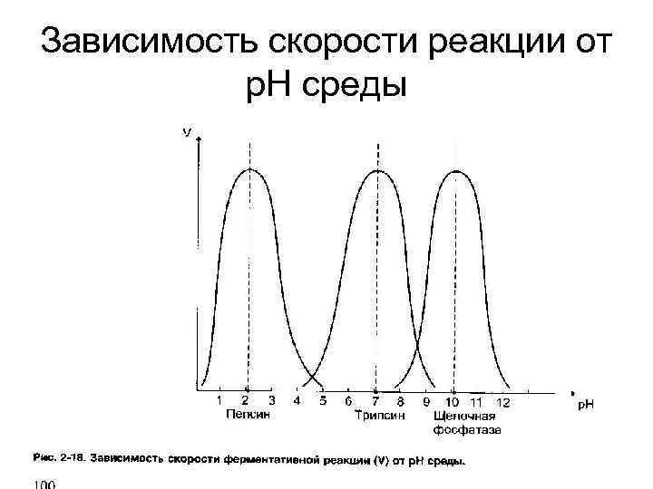 Зависимость скорости реакции от р. Н среды