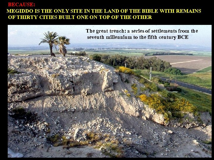 BECAUSE: MEGIDDO IS THE ONLY SITE IN THE LAND OF THE BIBLE WITH REMAINS