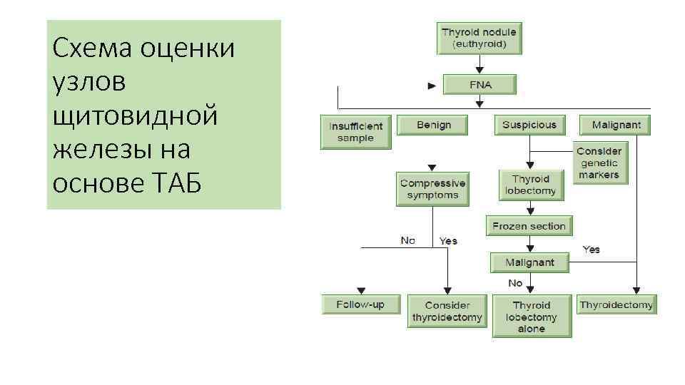 Схема оценки узлов щитовидной железы на основе ТАБ