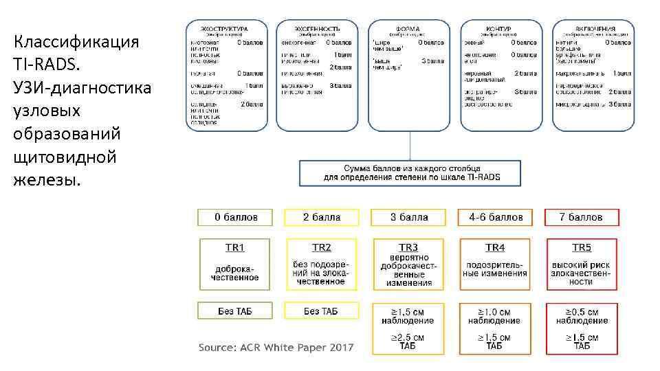 Классификация TI-RADS. УЗИ-диагностика узловых образований щитовидной железы. ACR TIRADS
